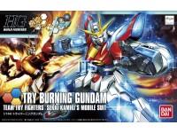 HG 028 Try Burning 55437